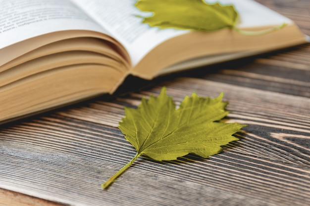 Open book on wooden desk with autumn leaves