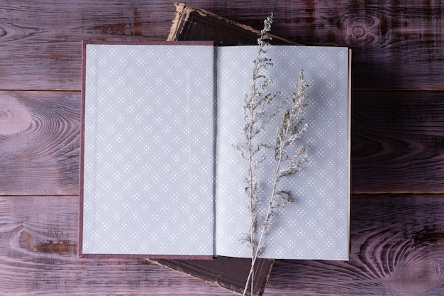Open book wormwood branch on wooden background