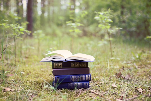 Open books outdoor. books in the woods