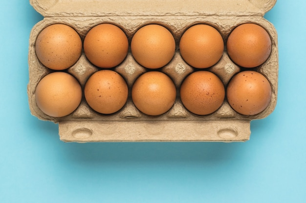 An open box of eggs on a light blue background. a natural product.