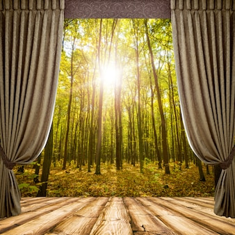 Open curtains on the background of the forest autumn background