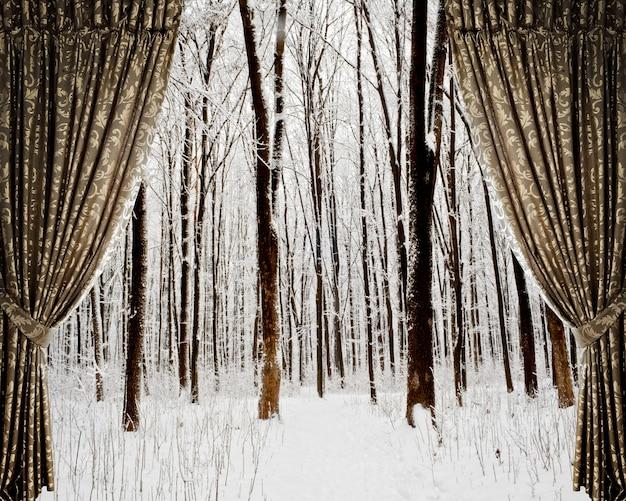 배경 겨울 숲과 별에 열린 커튼