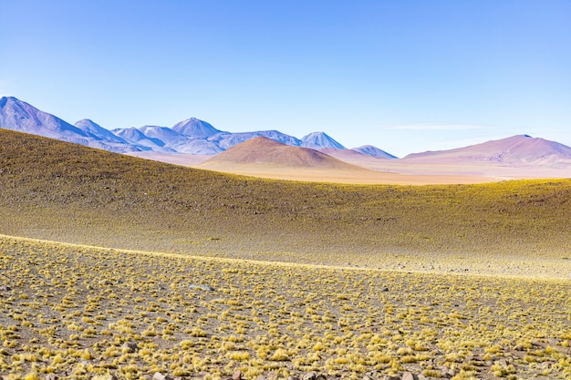 Open field in the atacama desert with mountains in the background.