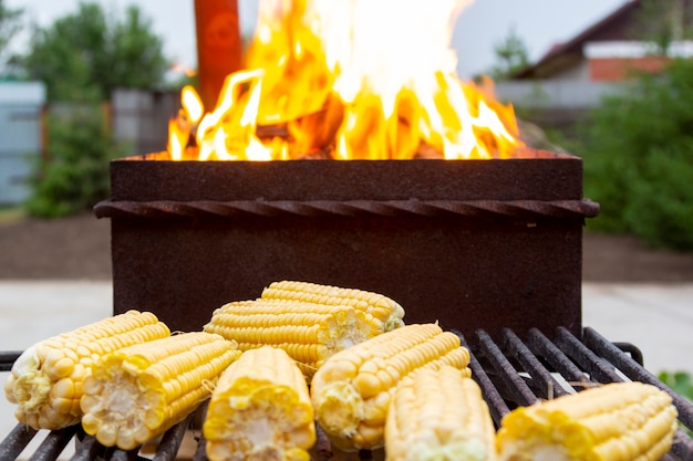Open fire in grill, barbecue for cooking sweet fresh corn in backyard outdoors, vegetarian food