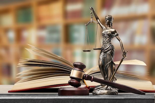 図書館で法律の本を開く