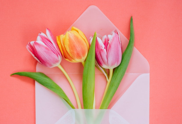 Open matte transparent envelope with multicolored tulips on living coral background
