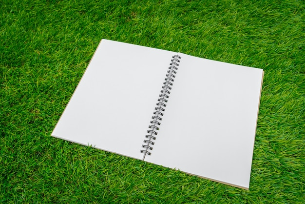 Notebook aperto su erba