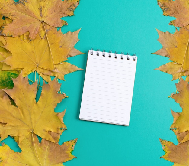 Open notebook in line with white blank pages on a green background, near yellow maple leaves, top view