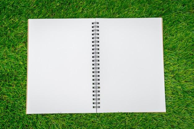 Открыть ноутбук на траве видно из выше