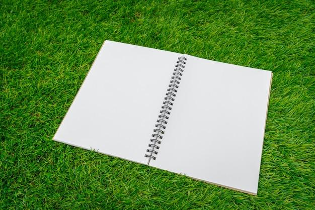 Открыть ноутбук на траве