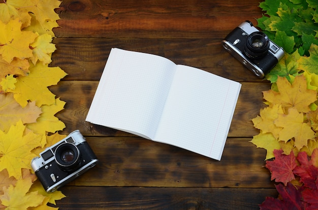 An open notebook and two old cameras
