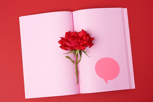 Open notebook with pink blank sheets and red rose, top view