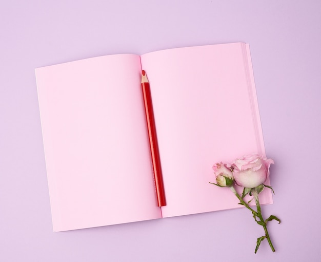 Open notebook with pink sheets and pink rose