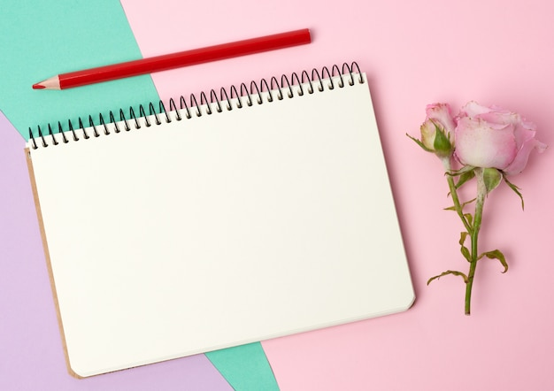 Open notebook with white sheets and pink rose on a blue pink background