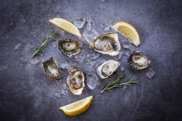 Open oyster shell with herb spices lemon rosemary served table and ice healthy sea food raw oyster dinner in the restaurant gourmet food - fresh oysters seafood on black plate