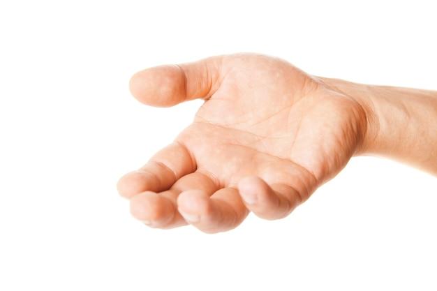 흰색 절연 남성의 손바닥 손 제스처를 엽니다