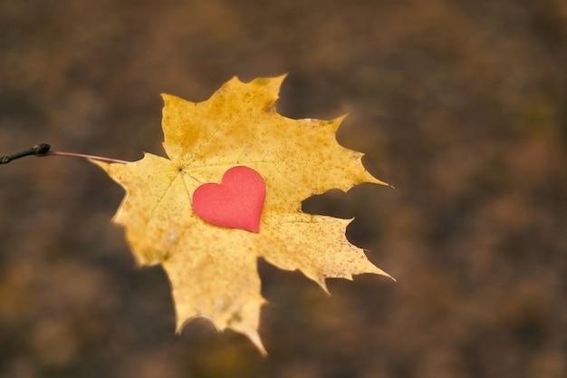 Open pure heart symbol, copy space