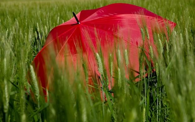 緑の芝生で赤い傘を開く
