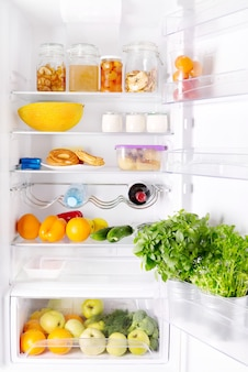 Open refrigerator with various products