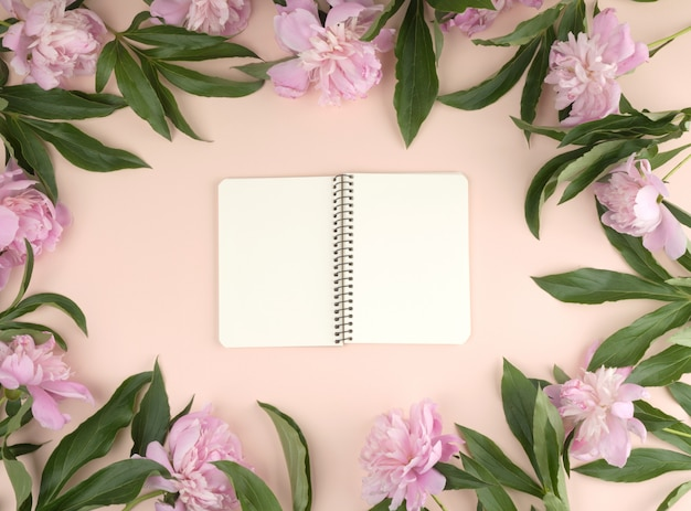 Open spiral notebook with blank white pages on a beige background, blooming pink peonies