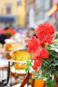 Открытая терраса ресторана в стокгольме, швеция. сосредоточьтесь на цветках герани