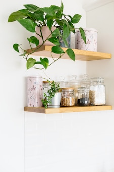 Open wooden shelves in the kitchen
