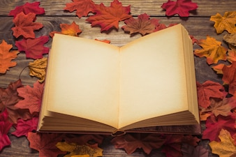 Opened book on heap of leaves