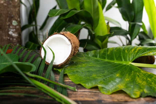 An opened coconut is lying on a wooden table among green foliage