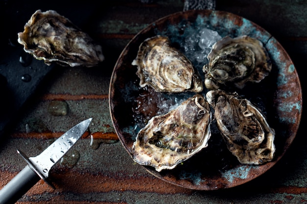 Opened fresh oysters on a dark background, a knife and water drops. rostik style.