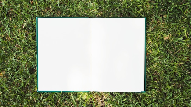 Opened notebook placed on green grass