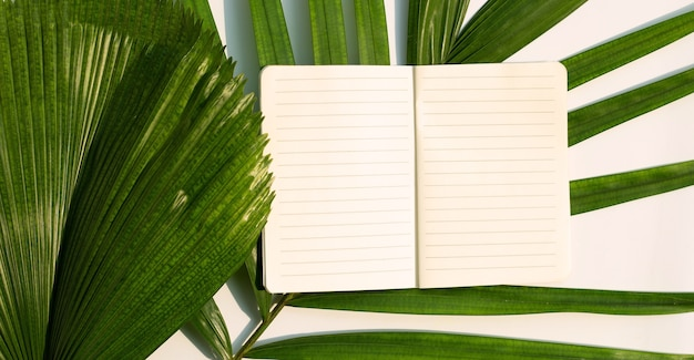 Opened notebook on tropical palm leaves. top view