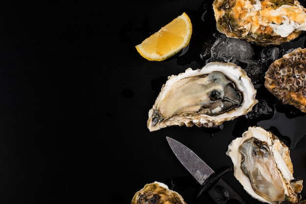 Opened oysters, ice and lemon on a black surface
