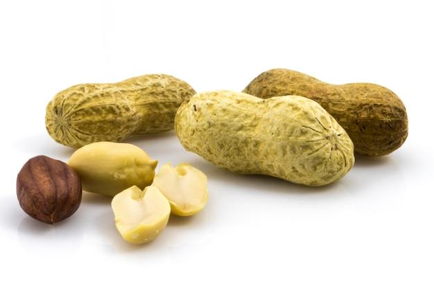 白い背景にピーナッツを開いて、単一のピーナッツを骨折します