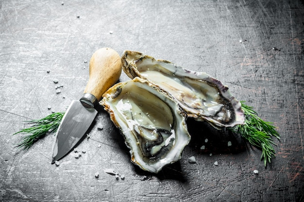 暗い木製のテーブルにナイフとディルで生牡蠣を開いた