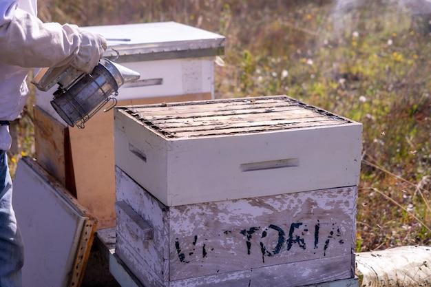 煙で蜂の巣を開く