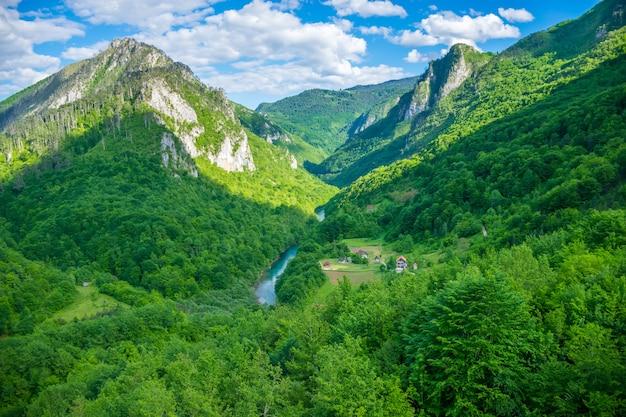 モンテネグロ北部のジュルジェビッチ橋から風景を開く。