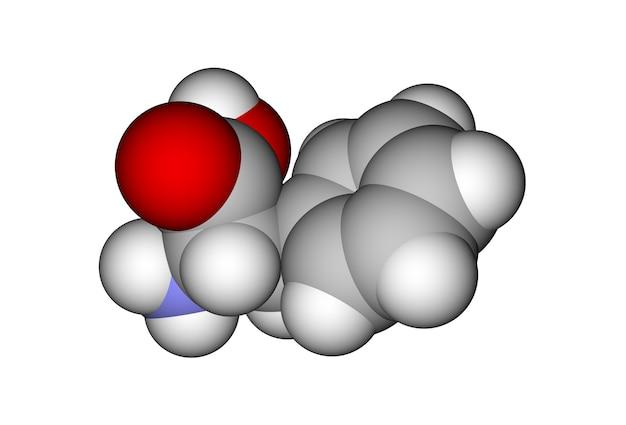 페닐알라닌의 최적화 된 분자 모델