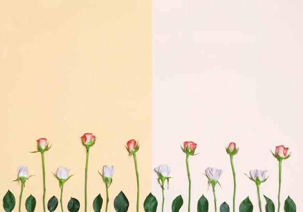 花と葉のオレンジとピンクの背景