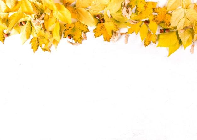 흰색 배경, 상위 뷰, 복사 공간에 주황색 가을 잎 테두리