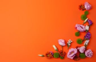 Orange Background with Beautiful Flowers