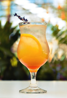 Orange cocktail  in high ball glass