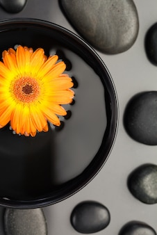 黒い小石に囲まれた鉢の中に浮かぶオレンジ色の花