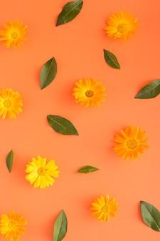Оранжевые цветы и листья на оранжевом фоне. монохромные цвета
