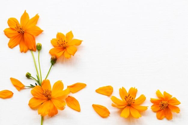オレンジ色の花コスモスアレンジメントフラットレイポストカードスタイル