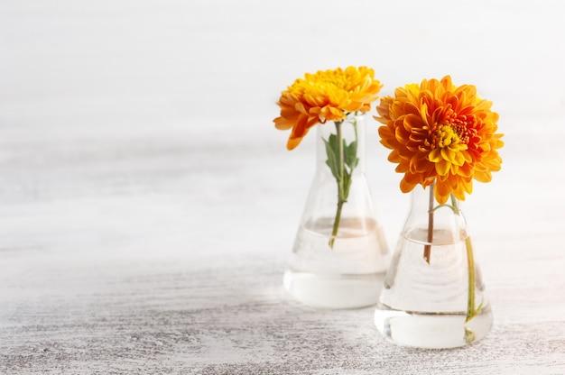 素朴なテーブルの上のガラスの鍋にオレンジ色の花。