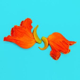 파란색 배경에 오렌지 꽃입니다. 미니멀 아트