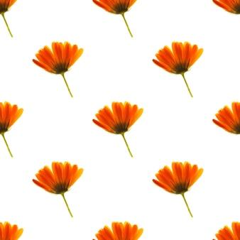 緑の茎を持つオレンジ色の花は、白い背景で隔離されます。シームレスなパターン。高品質の写真