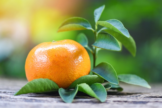 Orange fruit and leaf on wooden with green garden background