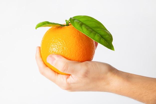 Frutto arancione in palma con foglie