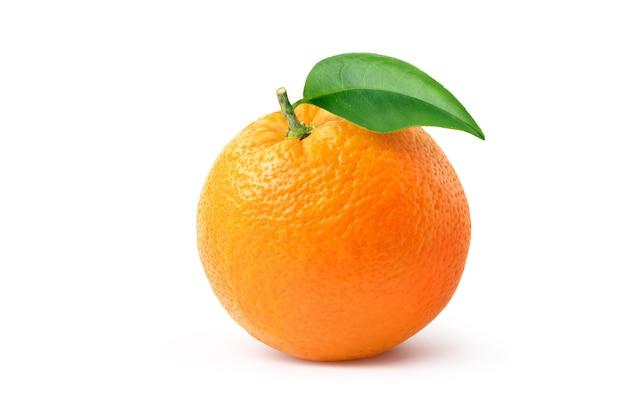 Оранжевые плоды с зелеными листьями, изолированные на белом. обтравочный контур.